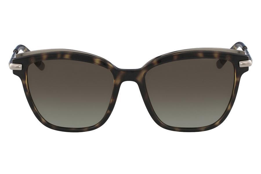 f5435ba0efcf8 Óculos de Sol Ck CK1237S 214 55 Tartaruga - Calvin klein - Óculos de ...