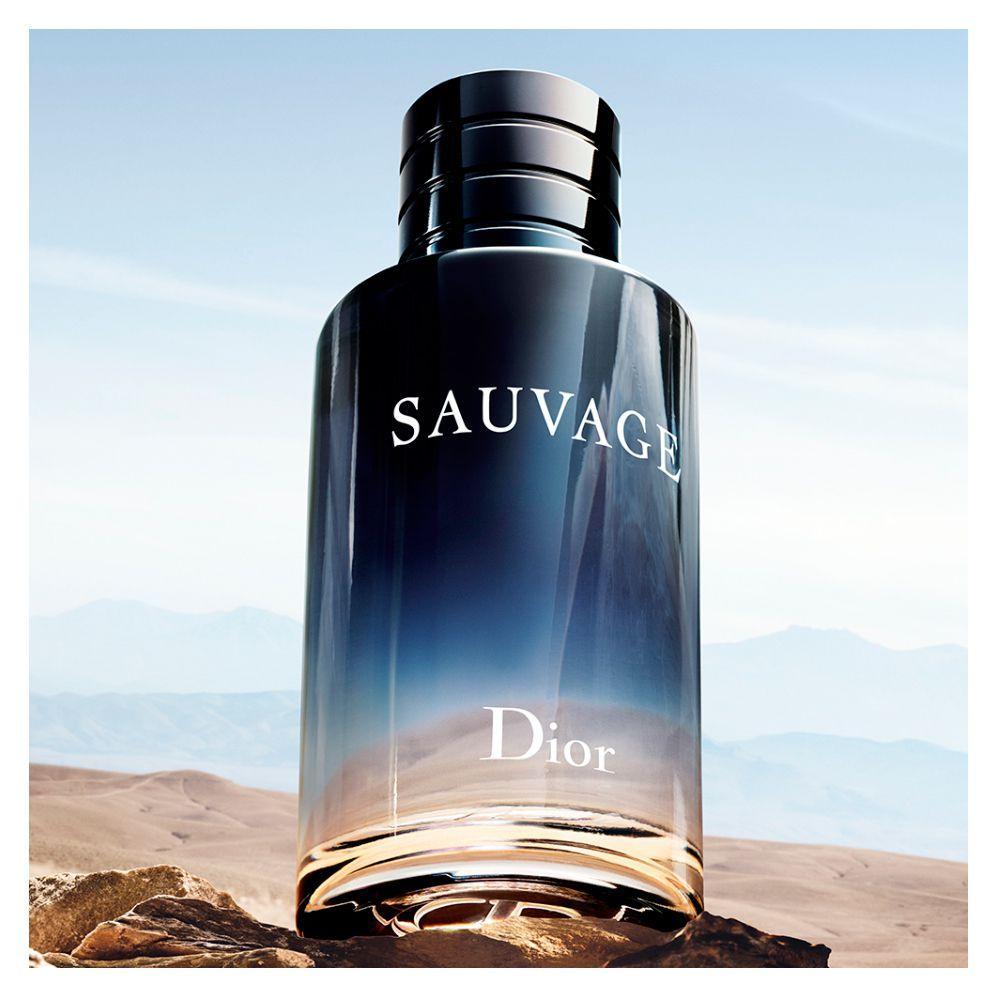 2948f88701f Sauvage Dior - Perfume Masculino - Eau de Toilette - Perfume ...