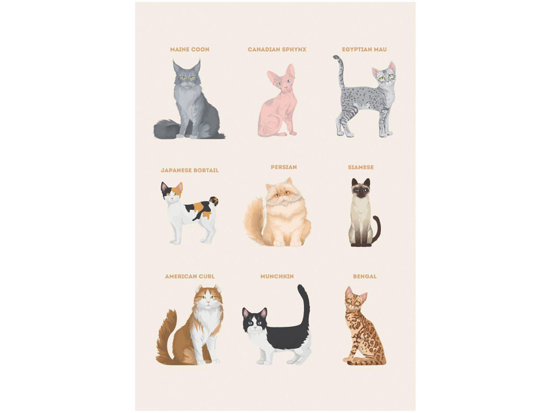 Placa Decorativa MDF Pet Lovers Gatos 20x29cm - Design Up Living