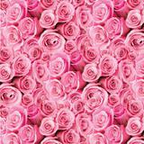 50 Saco Perolado P/Presente 35X54Cm Clara Floral Rosa - Cromus
