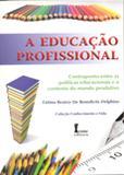 A Educação Profissional - Ícone