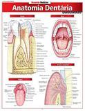 Anatomia Dentária Avançada - Barros fischer  associados