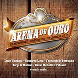 Arena De Ouro - CD - Som livre