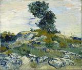As Pedras - Vincent van Gogh - Tela 30x35 Para Quadro - Santhatela