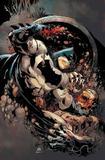 Batman Cavaleiro das Trevas III - Nº01 - Panini revistas