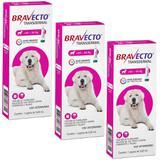 Bravecto Transdermal Cães 40 a 56kg Kit 3 unidades Antipulgas MSD