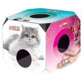 Brinquedo cat box adulto furacaopet - Furacão pet