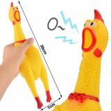 Brinquedo Pet Frango Galinha de Morder 30cm com Som - Mohnish imports