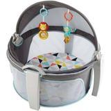 Cabaninha do Bebê - FFG89- Cinza-Fisher-Price - Mattel