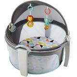 Cabaninha tipo Moisés do Bebê - FISHER-PRICE - Mattel