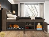 Cama Casal Pet Puppy Chocolate Framar