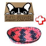 Cama Pet Cão Cães Gatos TamPP Caminha Cachorro + Caixa Surpr - Bom amigo pet