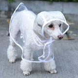 Capa De Chuva Transparente Para Cães pequeno porte - Hopet
