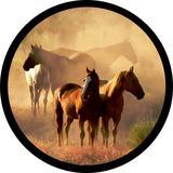 Capa estepe Ecosport Fox + Cabo + Cadeado Cavalos Natureza CN221 - Lorben