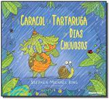 Caracol e a tartaruga em dias chuvosos, o - Brinque book
