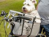 Cesto para cachorro pet-basket até 25kg - Petbasket