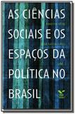 Ciencias sociais e os espacos da politica no brasi - Fgv