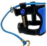 Coleira Illusion, Modelo Encantador De Cães, Premium - G - Azul - Molinas pet