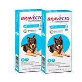 Combo 2 Unidades Bravecto Transdermal para Cães Antipulgas e Carrapatos 20 a 40kg - Msd