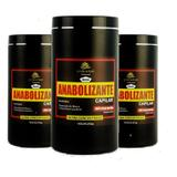 Combo 3 produtos Anabolizante Capilar Prolinehair