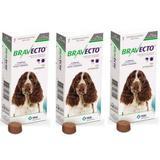 Combo Bravecto Antipulgas E Carrapatos Para Cães De 10 - 20kg - 3 unidades - Msd