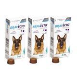 Combo Bravecto Antipulgas E Carrapatos Para Cães De 20 - 40kg - 3 unidades - Msd