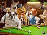 Dogs: Bilhar - Sarnoff  Tela Grande Para Quadro - Santhatela