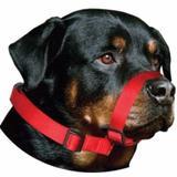 Focinheira Nylon Com Regulagem - Amf pet