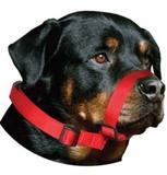 Focinheira Nylon Pet Ajuste Cachorro Cães - Amf pet