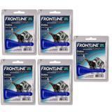 Frontline Top Spot Antipulgas e Carrapatos Gatos Kit 5 unidades Boehringer - Merial boehringer