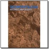 Geomorfologia - Edgard blucher
