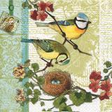 Guardanapos familia de pássaros HOF211303 pct 20fls - Home fashion