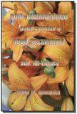 Guia bibliografico para estudar o novo testament03 - Terceira visao