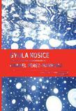 Gyula Kosice In Conversation With / En Conversacion Con Gabriel Perez-Barreiro - Ed. fundacion cisneros