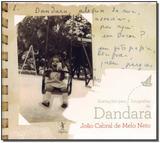 Ilustrações Para Fotografias de Dandara - Objetiva
