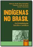 Indigenas no brasil - (in)visibilidade social e ju - Jurua
