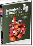Introdução a Botânica - Instituto plantarum