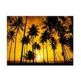 Jogo americano decorativo, criativo e descolado  Pôr do sol e coqueiros - tamanho 30 x  40 cm - Colours  creative photo decor