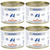 Kit 04un Alimento Úmido Recovery Royal Canin Cães Gatos 195g