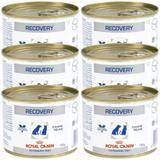 Kit 06un Alimento Úmido Recovery Royal Canin Cães Gatos 195g