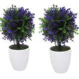 Kit 2 Plantas Mini Bonsai Artificial Flor Com Vasinho Branco - Imporiente