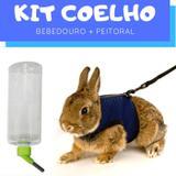 Kit Coelho com Bebedouro e Peitoral com Guia Pawise