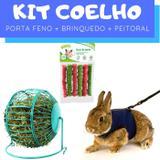 Kit Coelho com Porta Feno e Brinquedo e Peitoral Pawise