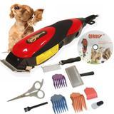 Kit Máquina Tosa Aparadora Profissional Cachorro e Pets 110V - Qirui