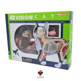 Kit Veterinário para estudo - Cachorro e Gato - 4d master