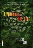 Livro - A vingança dos sete