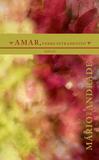 Livro - Amar, verbo intransitivo