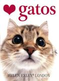 Livro - Amo gatos
