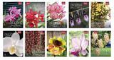 Livro - Coleção Rubi - Orquídeas da Natureza