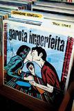 Livro - Garota imperfeita
